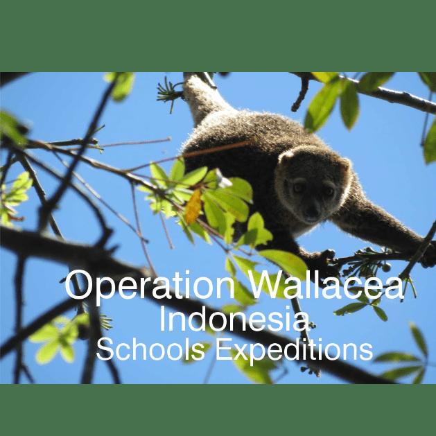 Operation Wallacea Indonesia 2018- Euan Gunderson