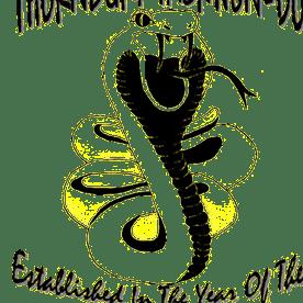 Thornbury Taekwon Do Fundraiser 2018