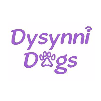 The Friends of Dysynni Dogs