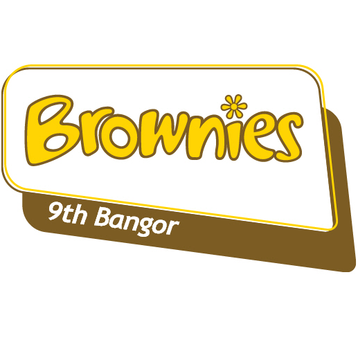 9th Bangor Brownies cause logo