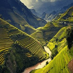 Vietnam 2021 - Reece Blakey