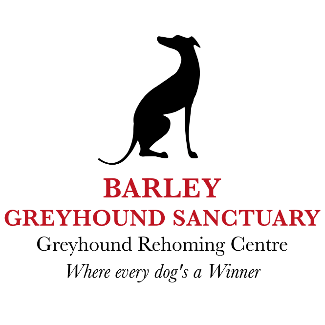 Barley Greyhound Sanctuary