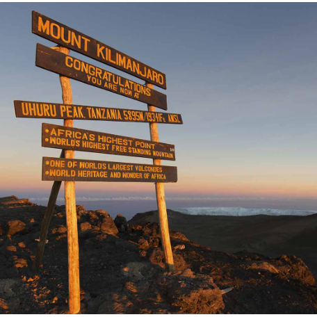 Meningitis Research Foundation Kilimanjaro 2021 - Sophie Chorbachi