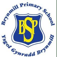 Brynmill Primary School