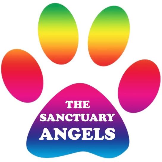 The Sanctuary Angels