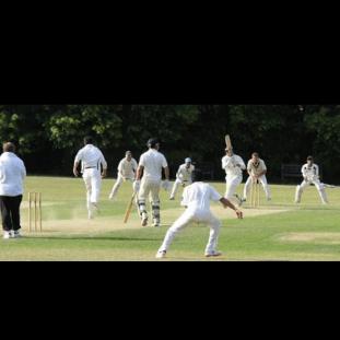 Sheen Park Cricket Club