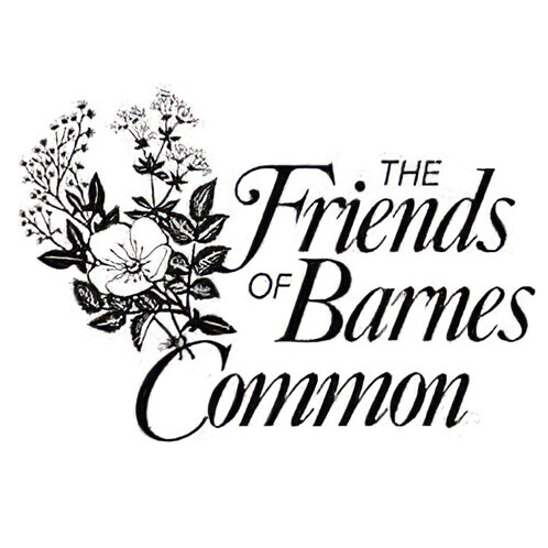 Friends of Barnes Common