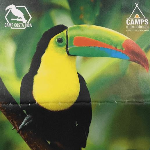 Camps International Costa Rica 2020 - James Izod