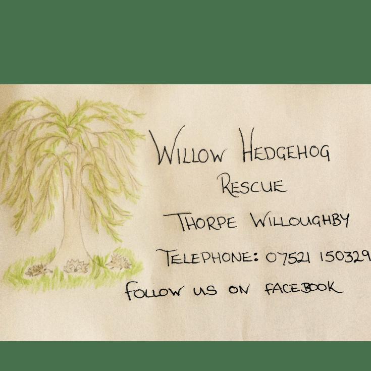 Willow Hedgehog Rescue