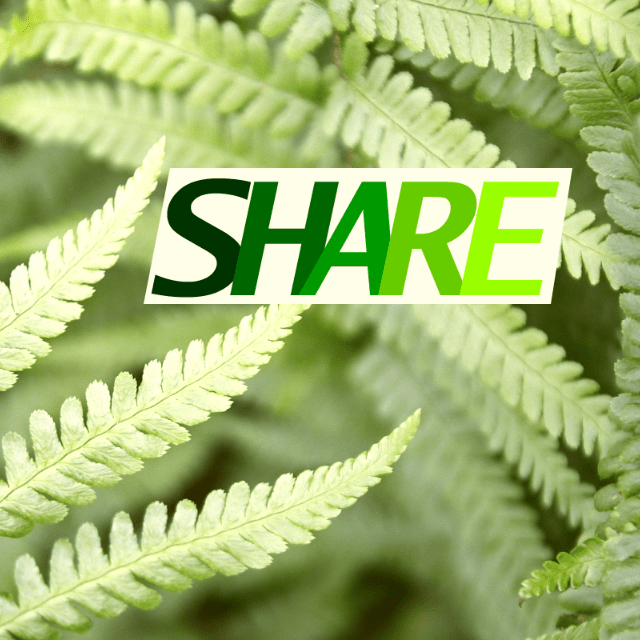 SHARE (South Hill Association for Renewable Energy)