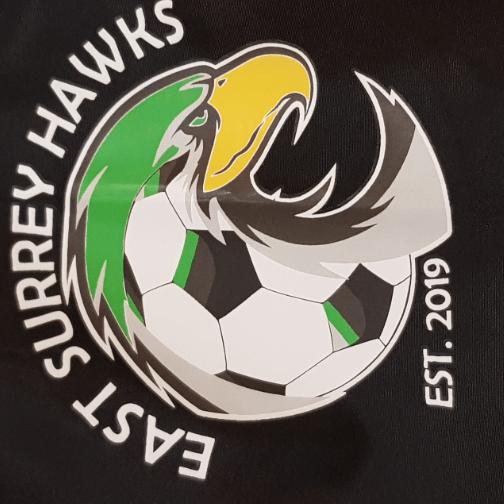 East Surrey Hawks
