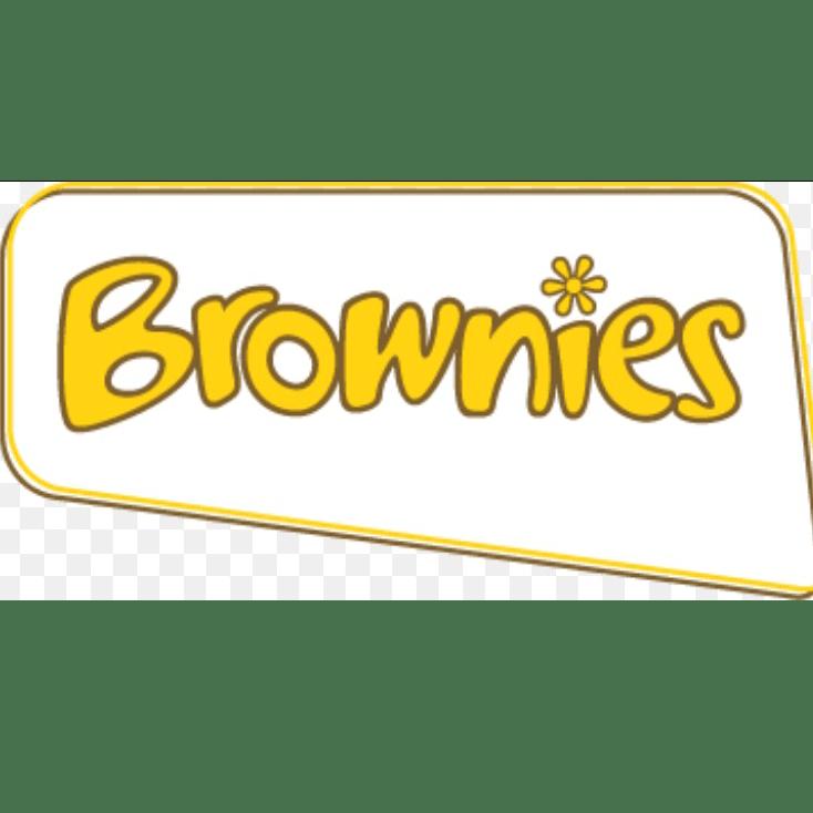1st Rainton Gate Brownies