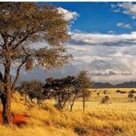 World Challenge Namibia 2019 - Pippa Wilson