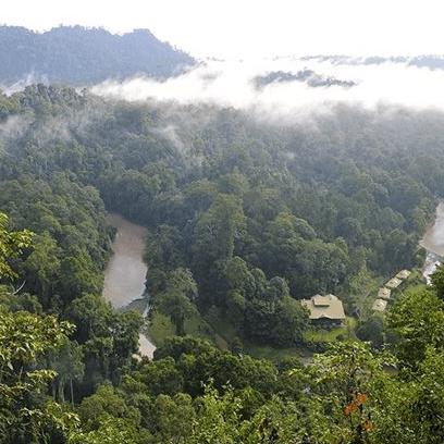 True Adventure Borneo 2020 - Annabel Nakatani-Brown