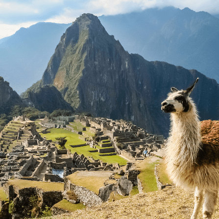 True Adventure Peru 2019 - Katy Lawrence