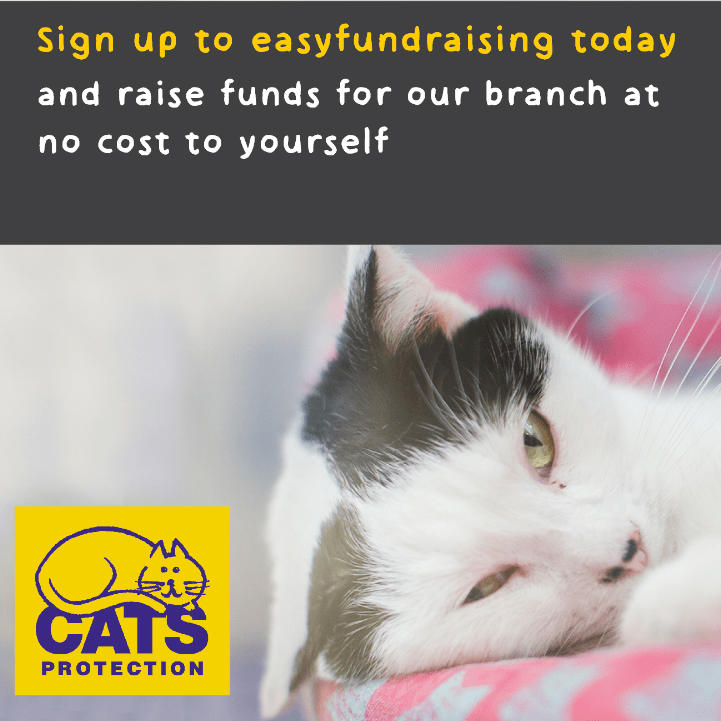 Cats Protection Strathspey Branch