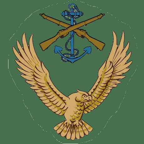 HQAC Skill At Arms Team