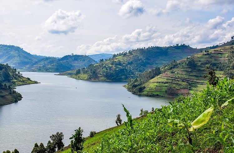 Uganda 2020 - Isabelle Rigby