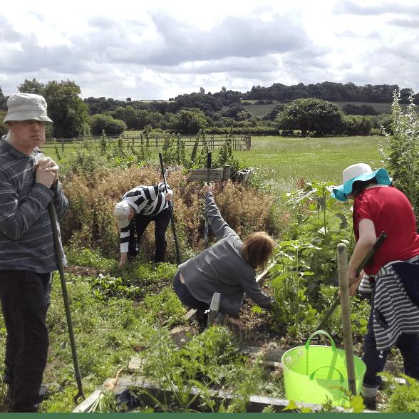 Living Potential Care Farming CIC