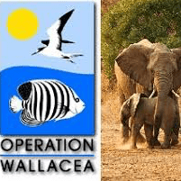 Operational Wallacea South Africa 2019 - Julia Ruiz