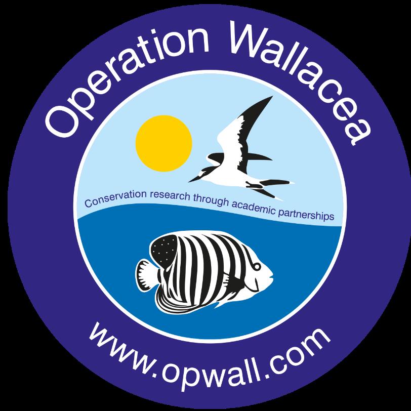 Operation Wallacea Mexico 2021 Iona Felfeli