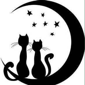 Star Cat Rescue