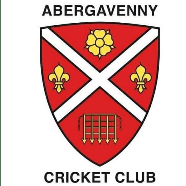 Abergavenny Cricket Club cause logo