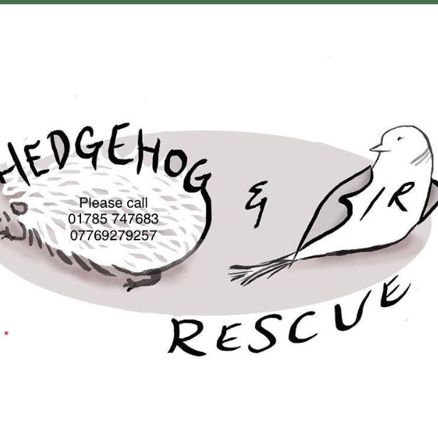 Hedgehog and Garden Bird Rescue (Staffordshire)