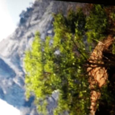 Malawi 2019 - Isabel Coltham