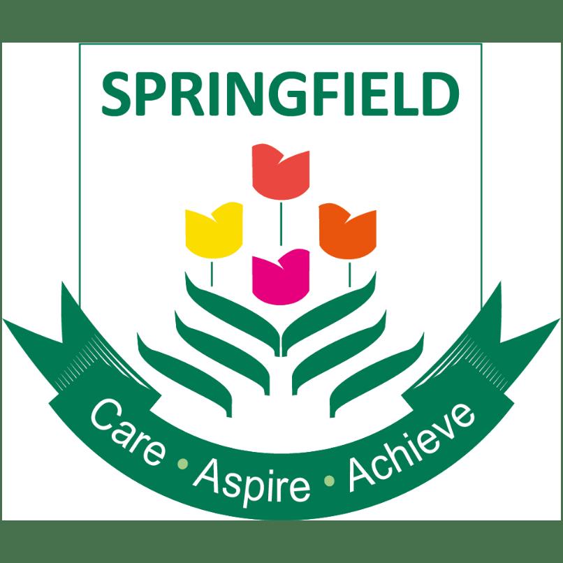 Springfield School - St Saviour cause logo