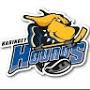 Haringey Hounds Ice Hockey Club