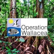Operation Wallacea Peru 2021 - Hayley Kane