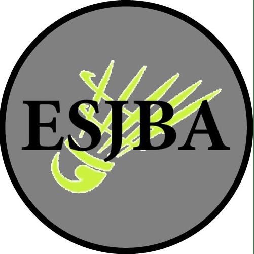 East Sussex Junior Badminton Academy
