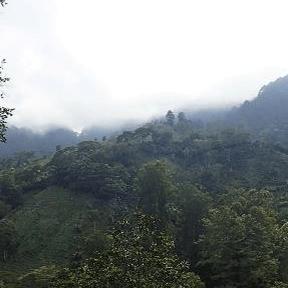 OpWall Expedition Honduras - Babs Khan