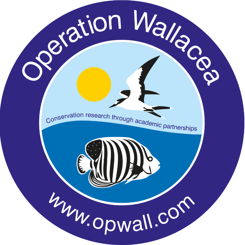 Operation Wallacea Honduras 2019 - Annabelle Simpson