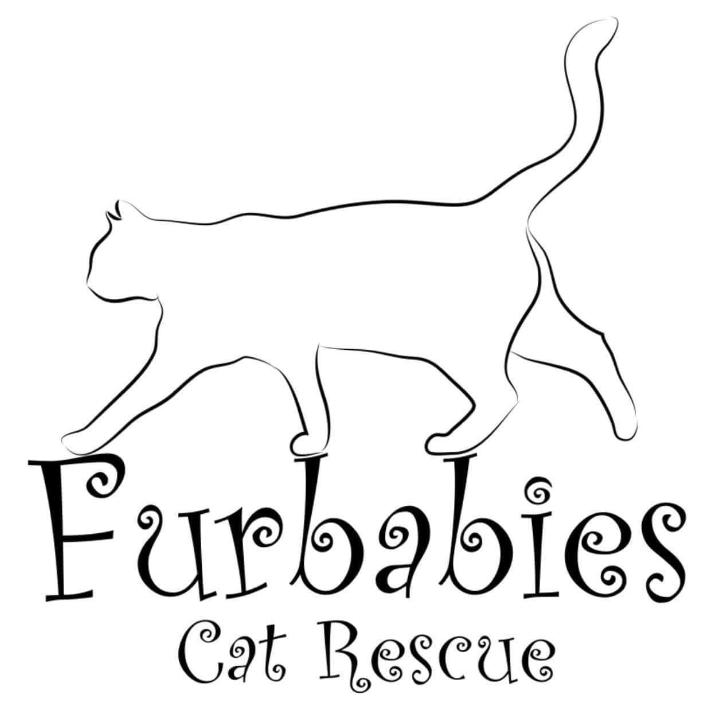 Furbabies Cat Rescue