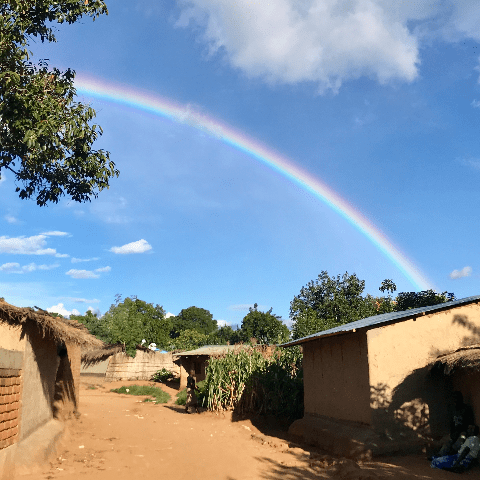 Malawi Schools Trust