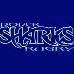 Dover Sharks Rugby Club