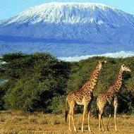 World Challenge Tanzania 2019 - Harry Williams