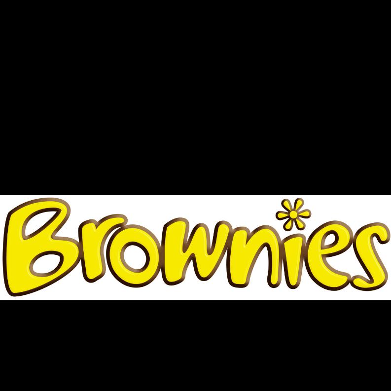 1st Wells Brownie Unit