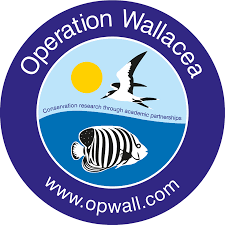 Operation Wallacea Indonesia Expedition 2021 -  Sadie May