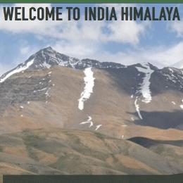 India 2019 - Ben Walker
