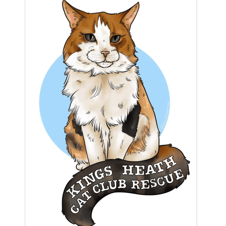 Kings Heath Cat Club Rescue