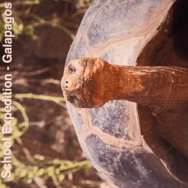 Ecuador and Galapagos Islands 2018 - Imogen Jordan