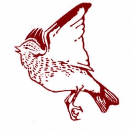 Woodlarks Campsite Trust