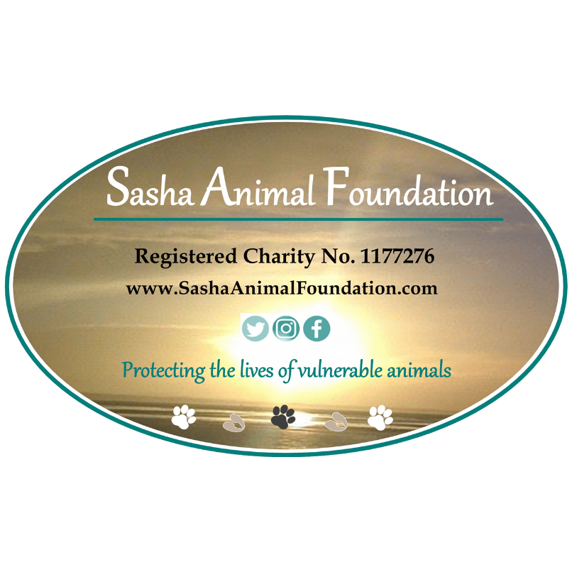Sasha Animal Foundation