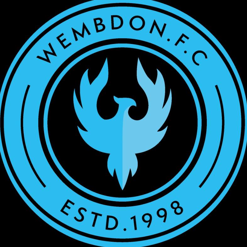 Wembdon Junior Football Club