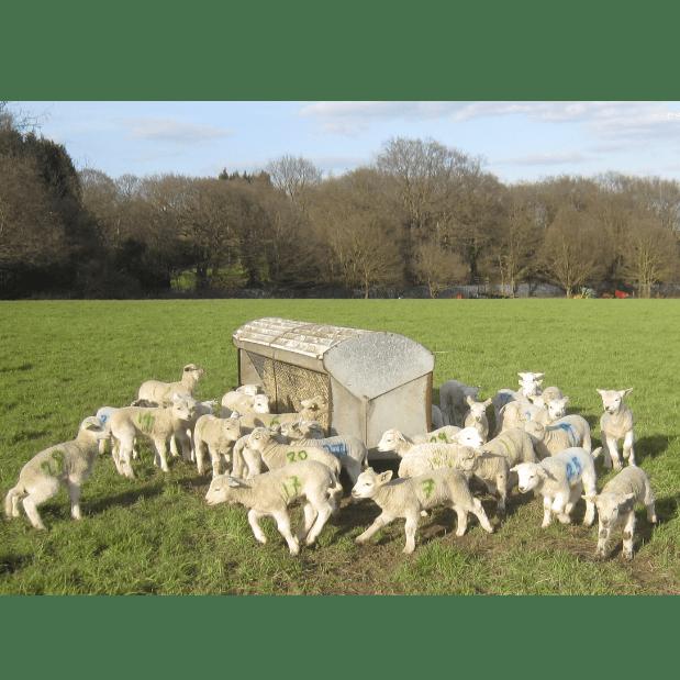 The Woodlands Farm Trust