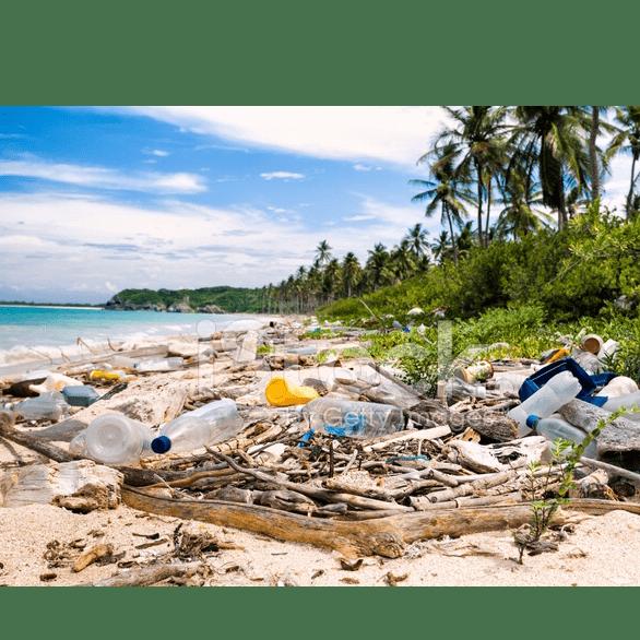 Zanzibar 2020 - Patience Wakefield