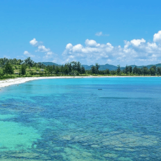 Borneo 2020 - Jada Simon